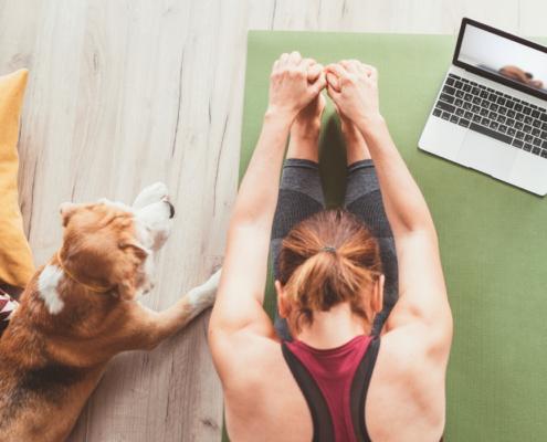 Cours virtuels - programmation - yoga