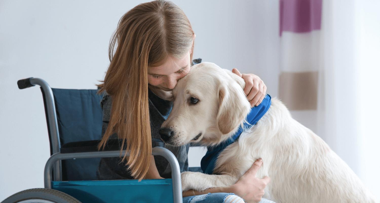 Accessibilité - enfant - chien d'assistance